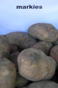 Aardappelen Van Fa. Dobbelaer