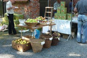 Uitstalling Fruit SLZ